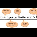Giới thiệu toàn bộ về XPath